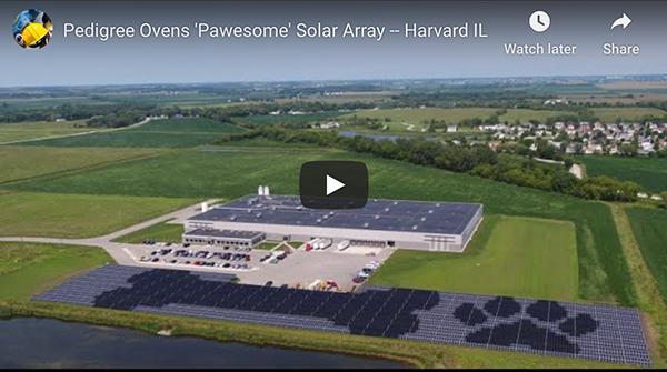 Pedigree Ovens' 4.5-acre solar installation